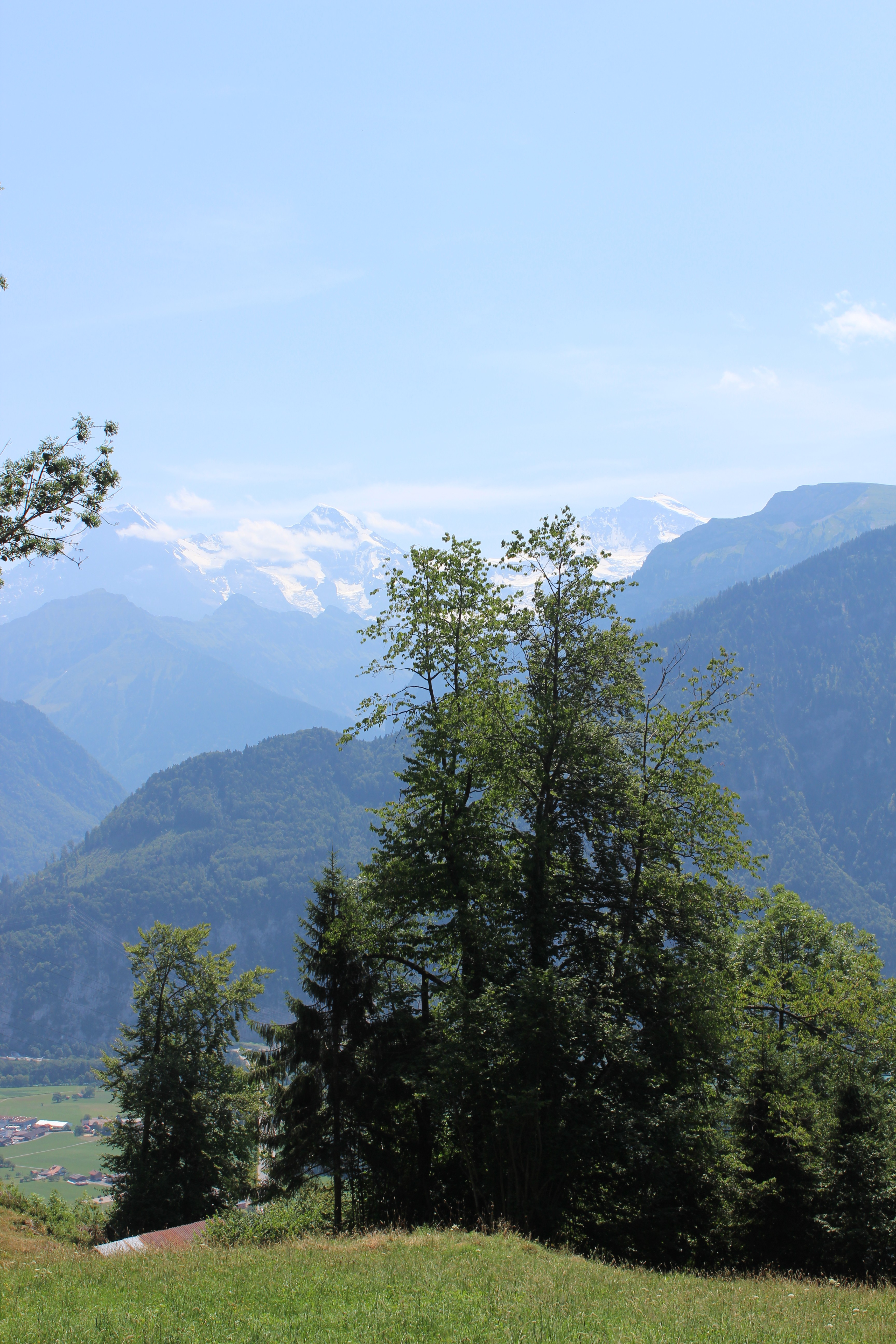 Livet Studio - The Jungfrau